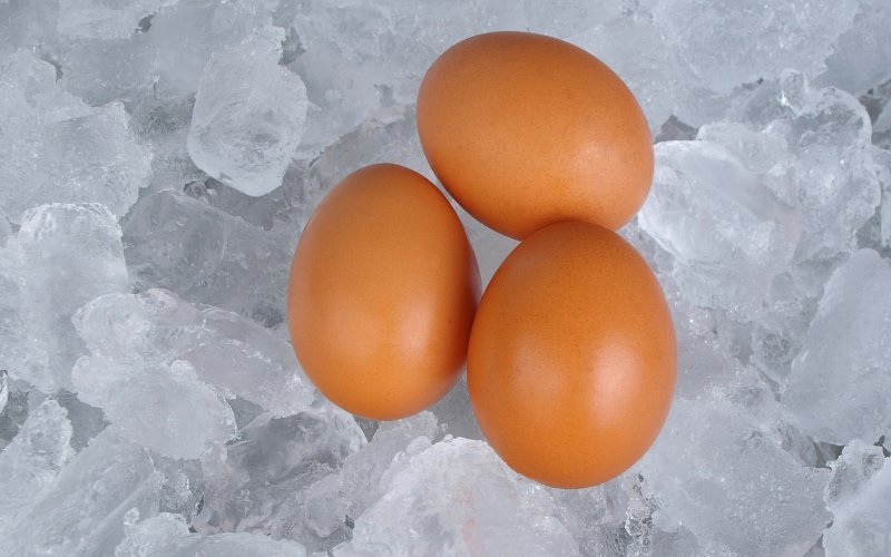 Everything You Need to Know Before You Freeze Your Eggs